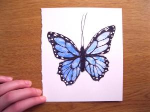 BlueButterflyWC