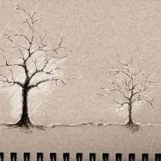 sketchingz