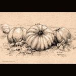 Pumpkins139