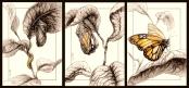 Metamorphosis - traditional ink and watercolor - 2015